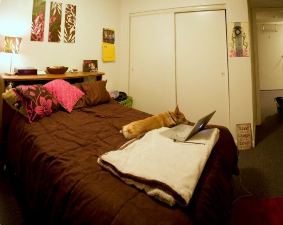Panoramic of my small bedroom