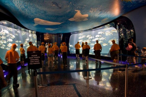 Entrance into the Georgia Aquarium © Holly Hildreth 2011