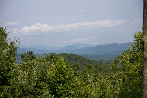 The view from our porch © Holly Hildreth 2011