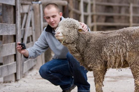 Daniel strikes a pose with a sheep