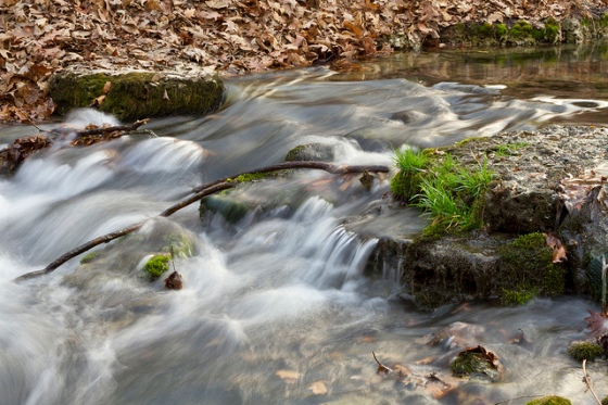 Twin Springs Part © Holly Hildreth 2012