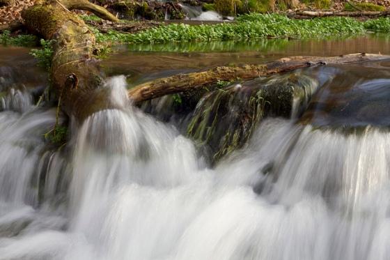 Twin Springs Park © Holly Hildreth 2012