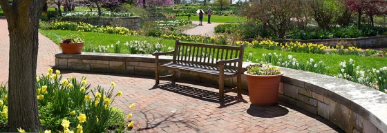 Panoramic of Flowers © Holly Hildreth 2012